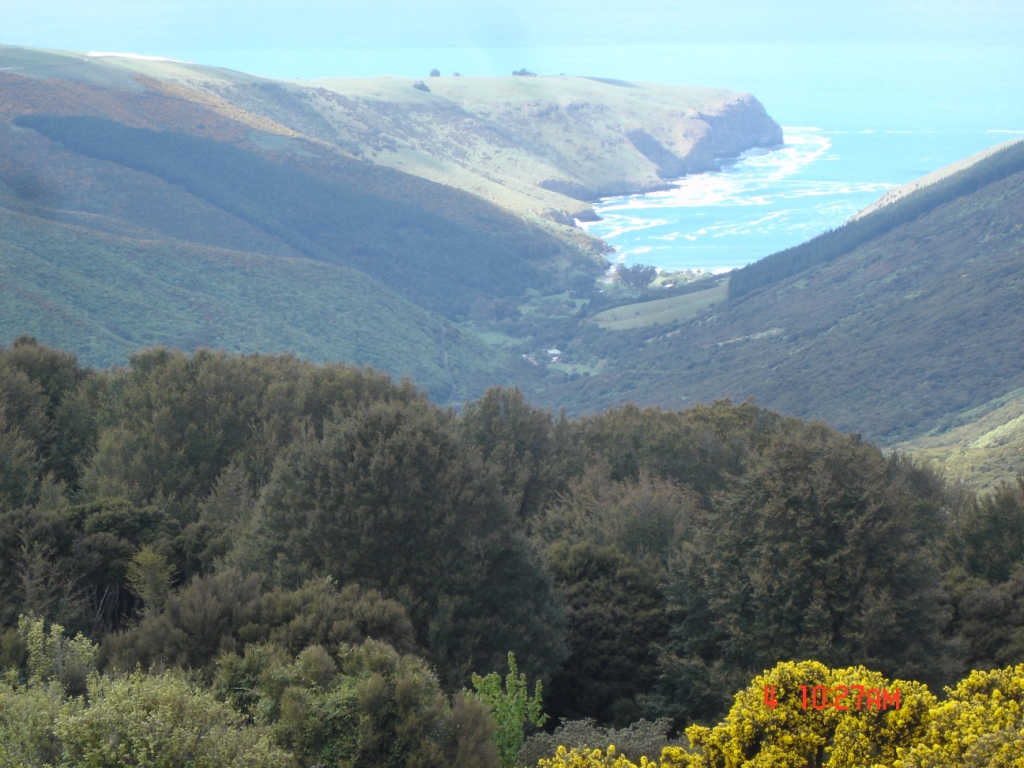 Hinewai Reserve and Otanerito Bay